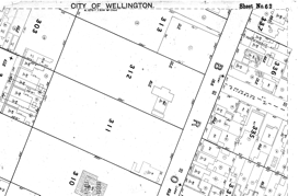 A section from Thomas Ward's Survey Map, 1891 [Wellington City Archives]