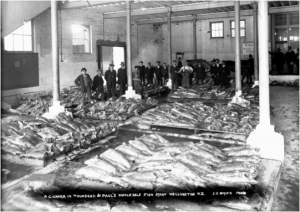 Townsend & Paul's wholesale fish market, Wellington, ca 1910 [Alexander Turnbull Library 1/2-047904-G] From 1920 to 1944/45, James Paul of the firm Townsend & Paul lived at 105 Brougham Street, Mt Victoria.
